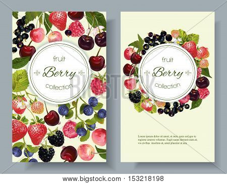 Vector mix berry vertical banners. Design for tea, natural cosmetics, beauty store, dessert menu, organic health care products, perfume, aromatherapy. With place for text
