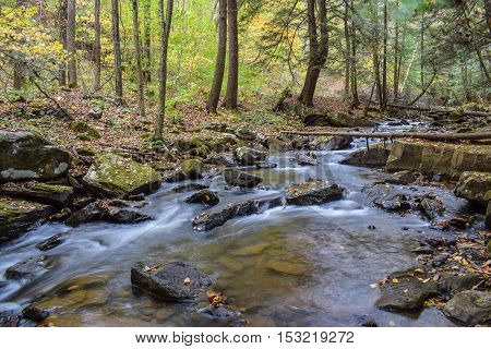 Small fast flowing stream in the forest.
