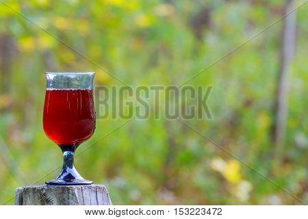 Wine Grapes Glass Of Jewish Holidays