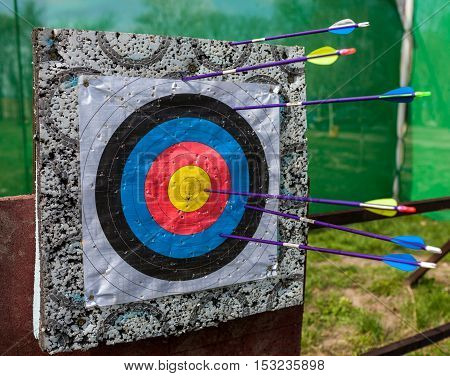 Arrows shot in a target at a bow shooting range