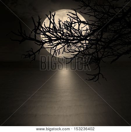 halloween or ghost style The moon is behind the shadows of twigs on the beach at night for dark background