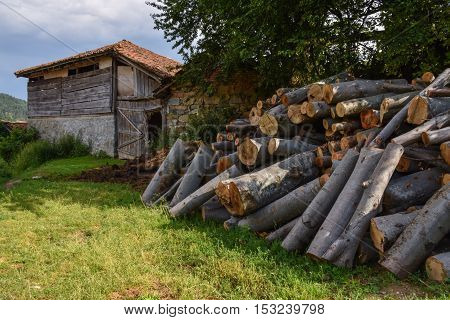 Pile of firewood next to a shack in the countryside