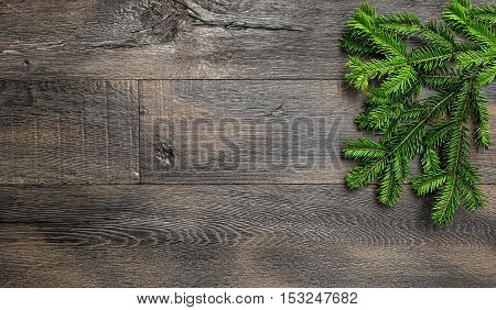 Christmas tree branches on wooden texture. Retro style holidays background