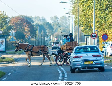 The Hague the Netherlands - July 30 2016: horse-drawn buggy on busy road