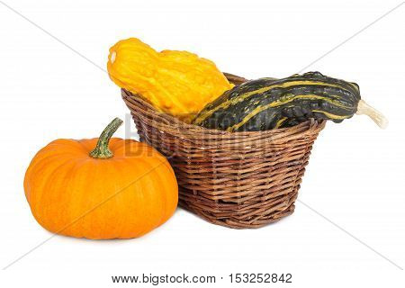 Colorful ornamental pumpkins and gourds in a basket on white background.