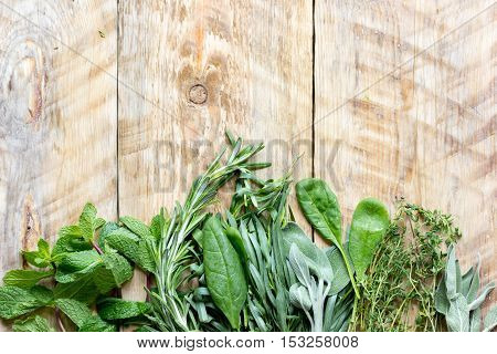 mint, rosemary, thyme - fresh herbs for cooking wooden background top view