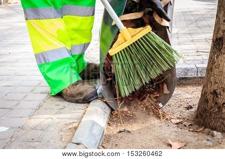 Cleaning Streets During Autumn Time