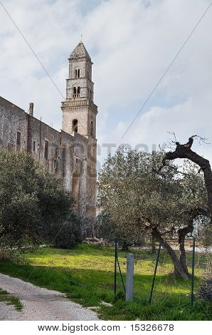 St. Domenico Church. Putignano. Apulia.