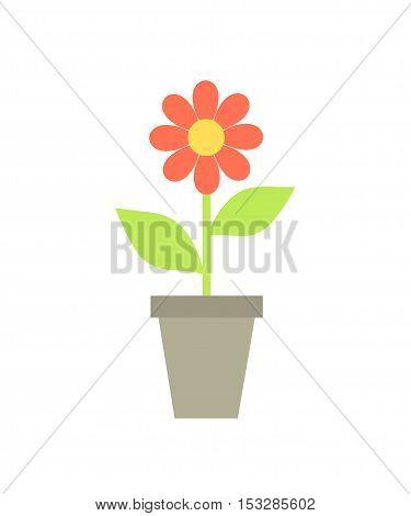 Red flat design flower in the pot illustration