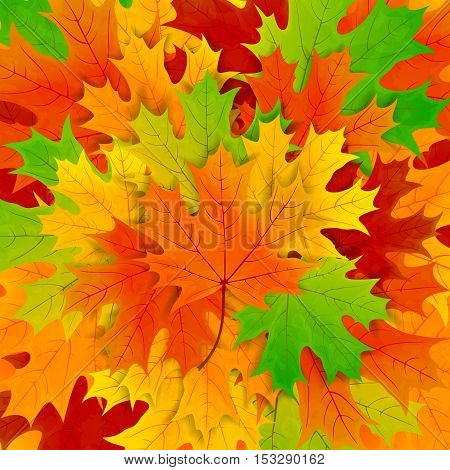 Autumn background with colorful maple leaves, illustration.