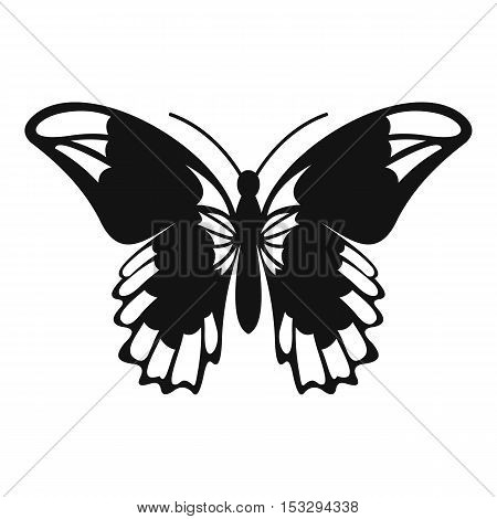 Admiral butterfly icon. Simple illustration of admiral butterfly vector icon for web