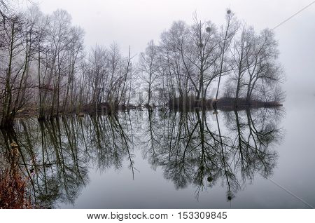 Reflection of trees from the water. Foggy sunrise. Autumn landscape on the lake.Tranquil landscape of misty swamp.Little island with trees.Mirroring the country from the river.