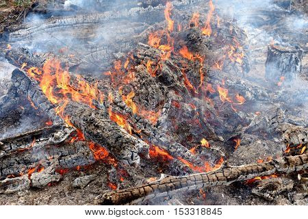 Logs in the fire, heat and ash