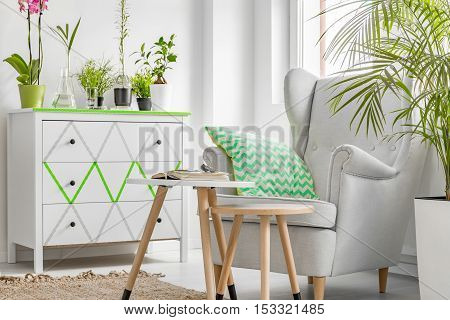 Room Corner With Armchair With Flower Pot