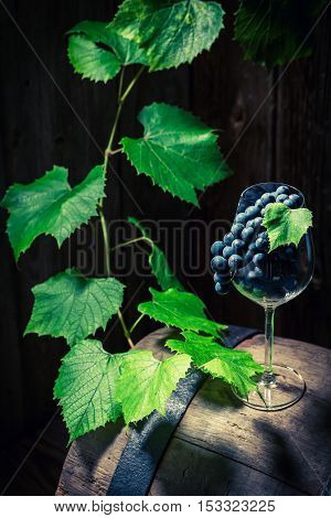 Grapes And Vines On An Old Barrel Of Wine