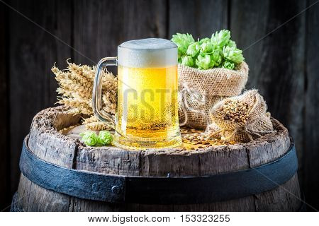 Light Beer With Foam, Hops And Wheat