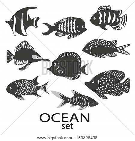 Fish silhouettes set. Collection of black and white sea fish isolated on white background. Vector illustration.