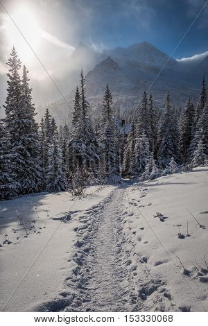 Snowy Mountain Trail To Shelter At Winter, Poland