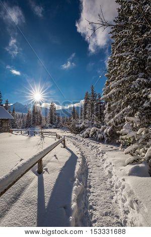 Winter Trail To Mountain Hut, Tatra Mountains, Poland
