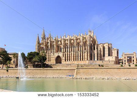 Catedral de Mallorca 02 - The beautiful cathedral of Majorca.