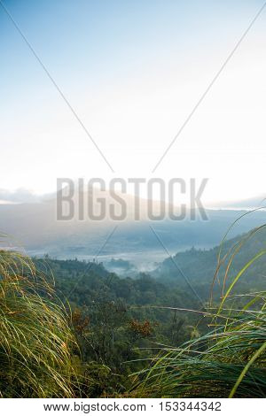 Morning landscape with a mountain and grass