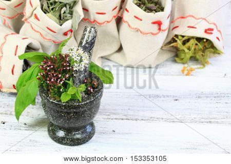 Mortar with oregano basil and sage herb dried medicinal and culinary herbs in bags