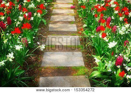Step stones close up in fresh spring flower garden, retro toned