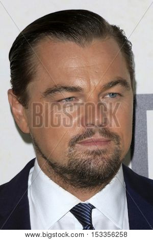 LOS ANGELES - OCT 24:  Leonardo DiCaprio at the Screening Of National Geographic Channel's
