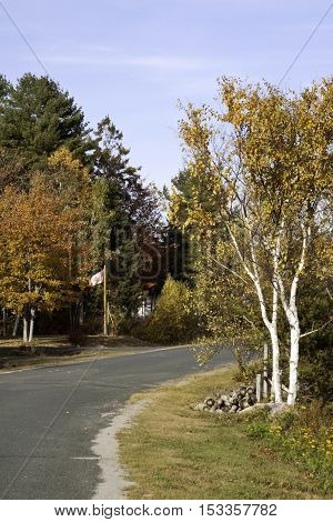 Idyllic view country road not far from Miramichi, NB, featuring Canadian Flag in front of tree enclose house on a bright, colorful, sunny day in October.