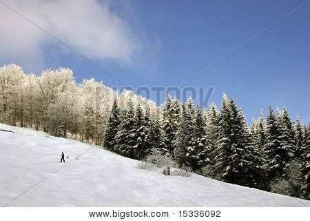 Mountain landscape with skier