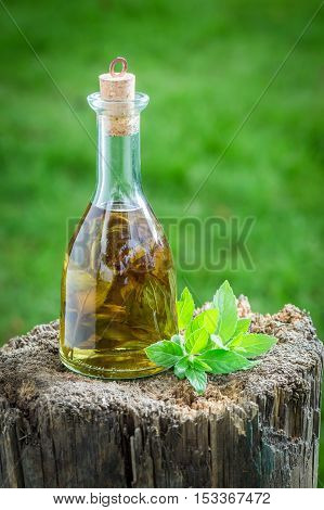 Healthy And Homemade Liqueur With Alcohol And Mint