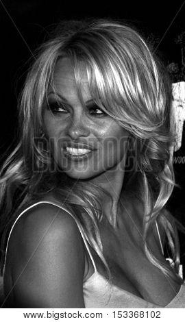 Pamela Anderson at the Rokbar Hollywood Grand Opening Party held at the Rokbar in Hollywood, USA on June 30, 2005.
