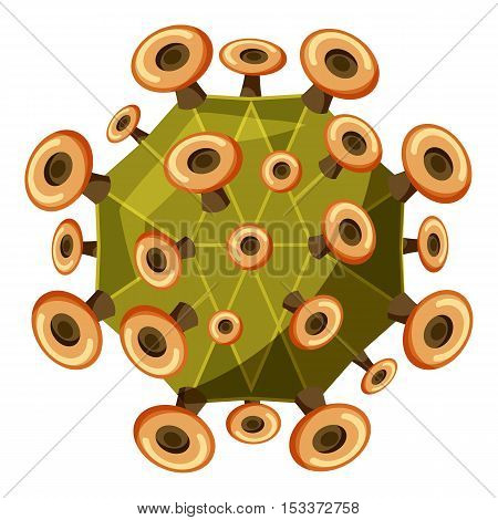 Zika virus icon. Isometric 3d illustration of Zika virus vector icon for web