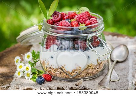 Tasty Muesli With Yogurt And Berry Fruits