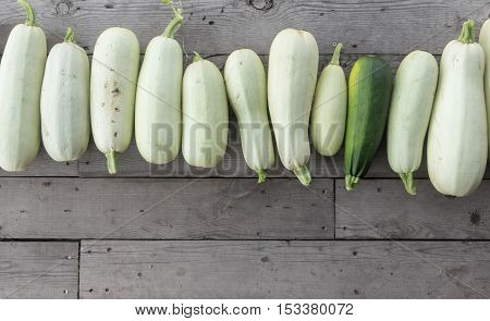 vegetable marrows in the garden on wood background