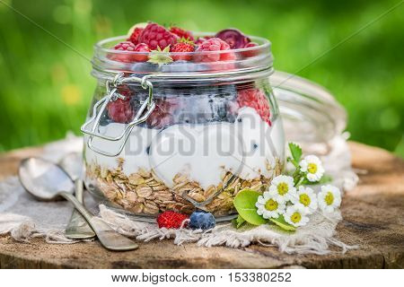 Healthy Berry Fruits And Yogurt With Granola