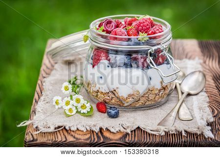 Closeup of healthy muesli with flowers and fruits