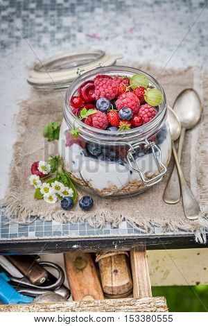 Closeup of fresh muesli with flowers and fruits