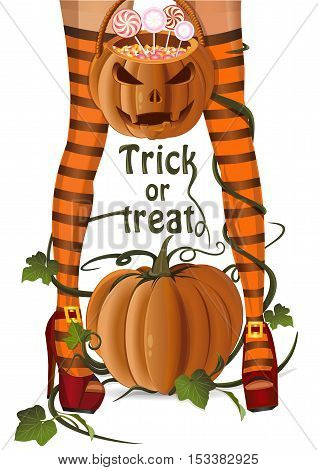 Halloween design. Closeup sexy witch legs on a background of pumpkin. Jack-o'-lantern bag with lollipops candy. Trick or treat. Halloween card