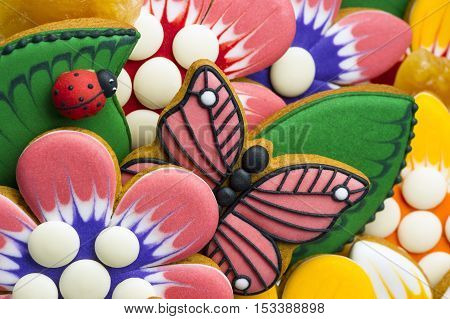 Gingerbread cookies for kids, colorful homemade sweet cakes in shape of flower, leaf, butterfly, ladybag, food industry, selective focus