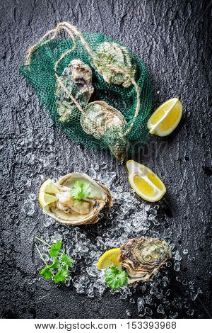 Tasty Oyster In Shell On Ice With Lemon