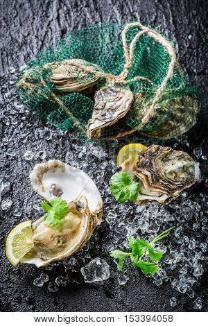 Delicious Oysters On Black Rock With Lemon