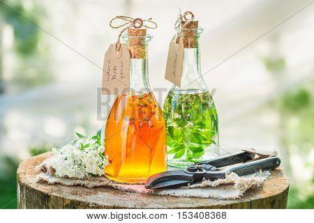 Homemade Tincture As Natural Medicine In Garden