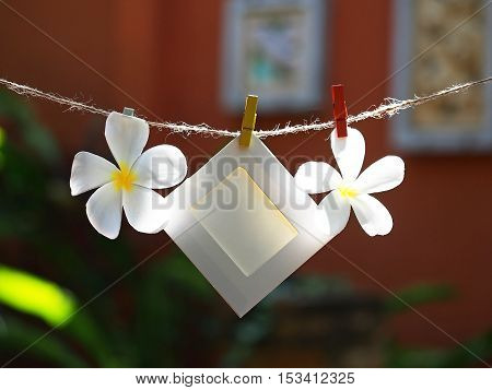 Photo Frames on Rope. background the nature soft focus