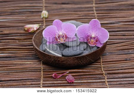 Gray stones with two orchid in bowl ,petals on mat