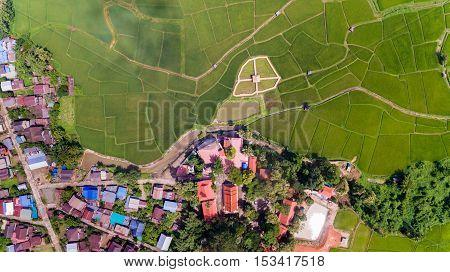 Rice farm and village Bird Eye View