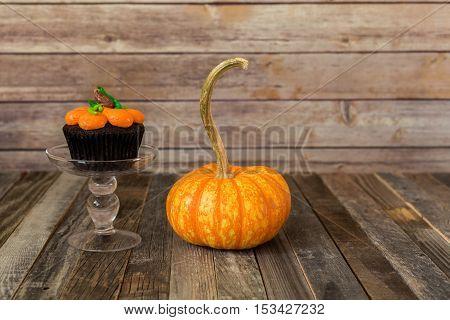 Fall pumpkin muffin with a decorative gourd