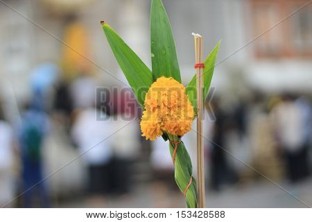 bouquet of marigold and incense for pray in buddhism temple