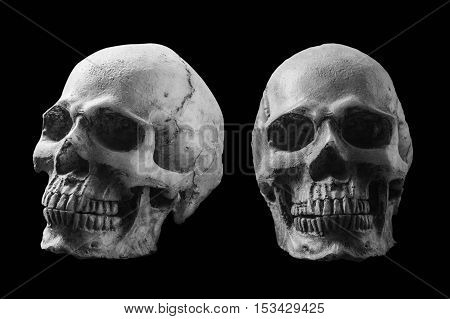 Skull with black and white on a black background.