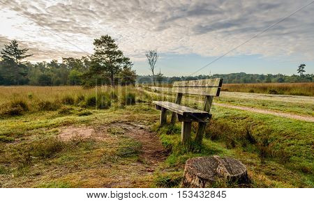 Weathered wooden bench in a quiet Dutch nature reserve early in the morning. In the foreground a sawed trunk is visible. Autumn has begun.
